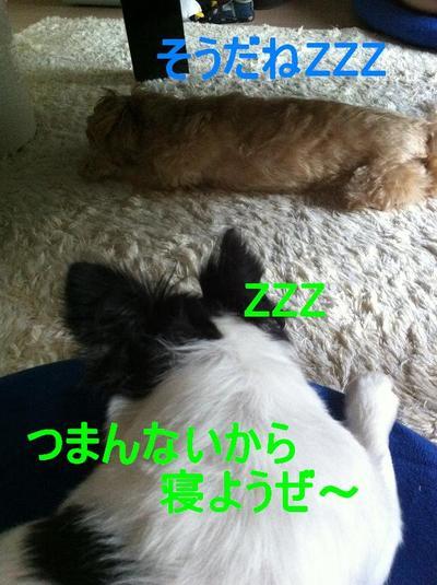 Img_14401